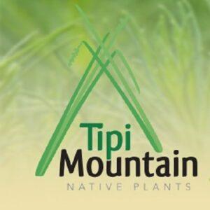 Tipi Mountain Native Plants